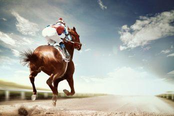Melbourne Cup: feest in het teken van paardenrennen