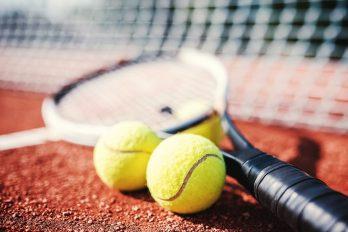 Davis Cup Finale: Tsonga vs Cilic